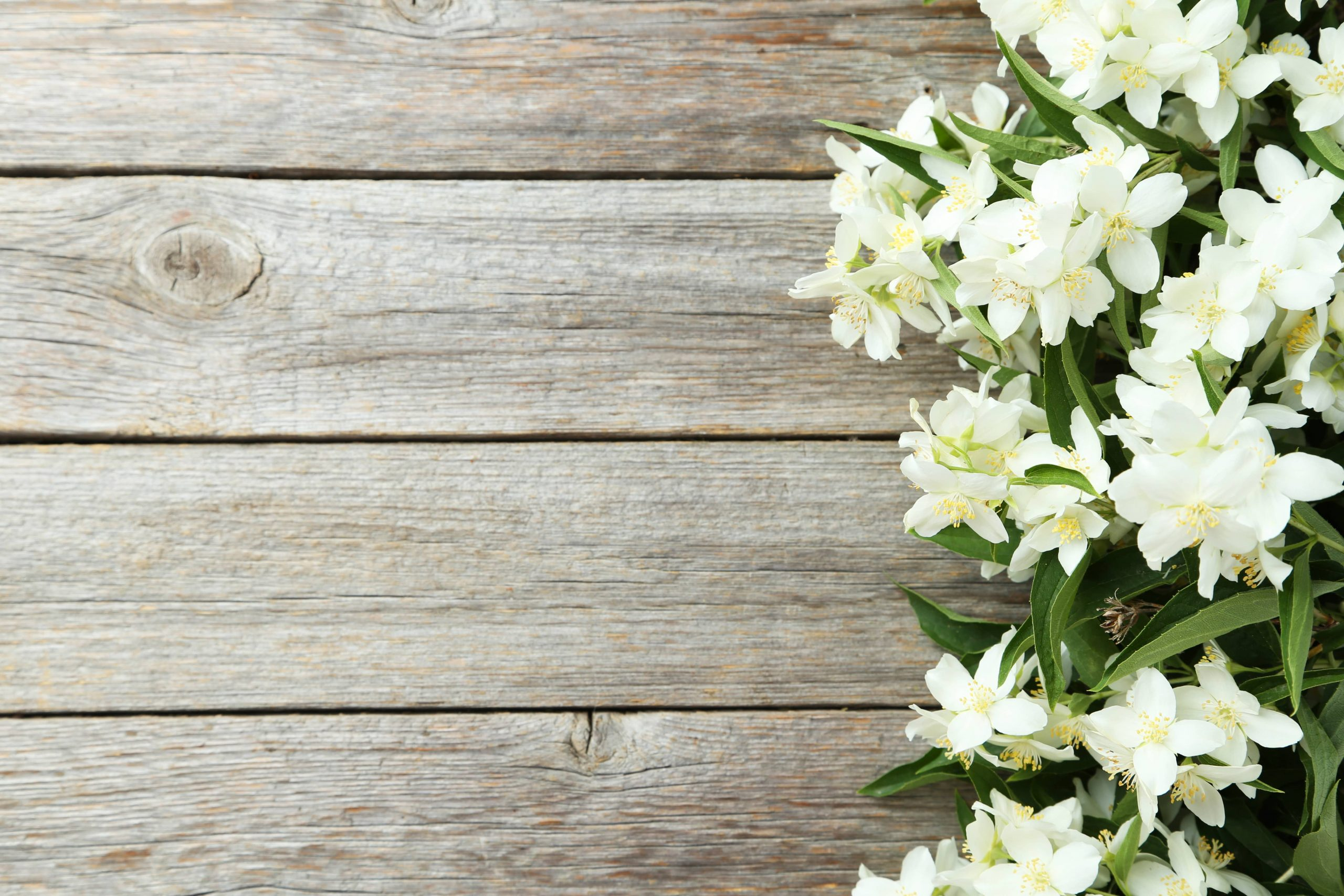 How to Personalize the 7 Elements of a Funeral