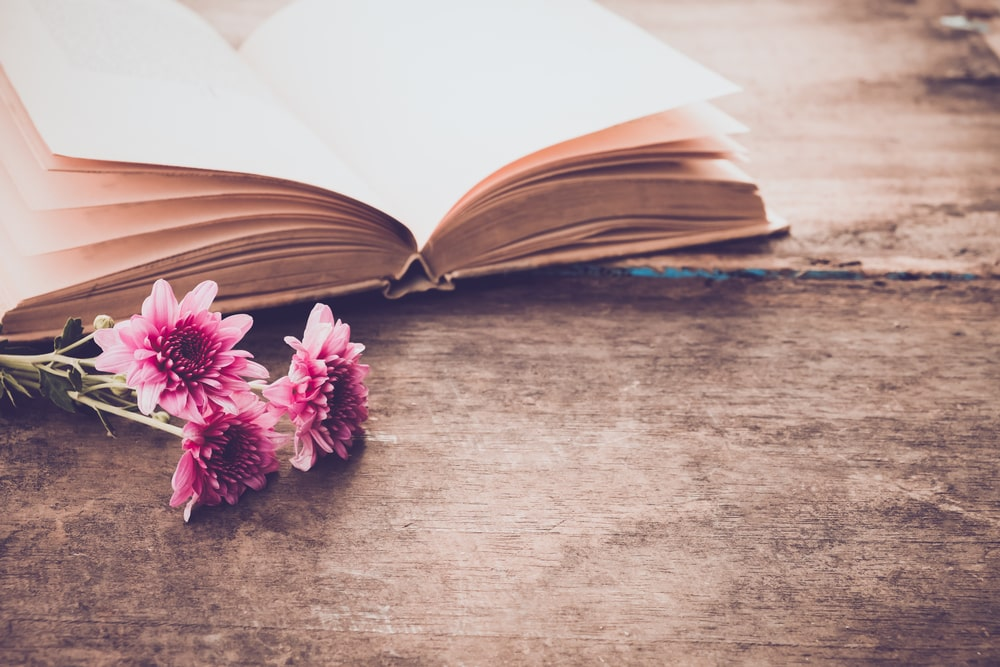 open book with pink flowers next to it