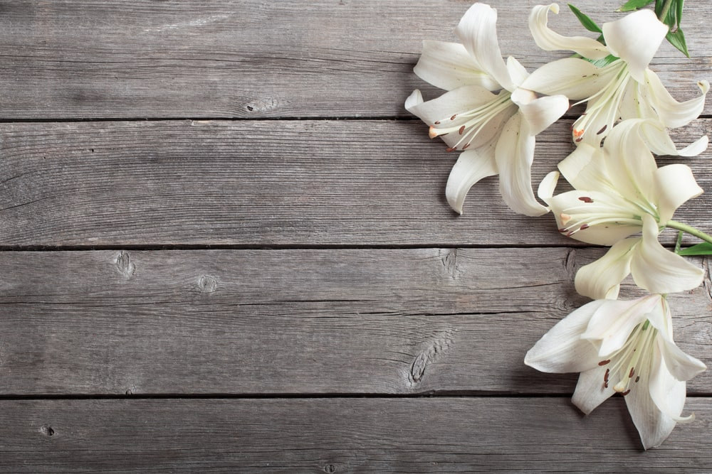 Simple Ways to Personalize the 7 Elements of a Funeral